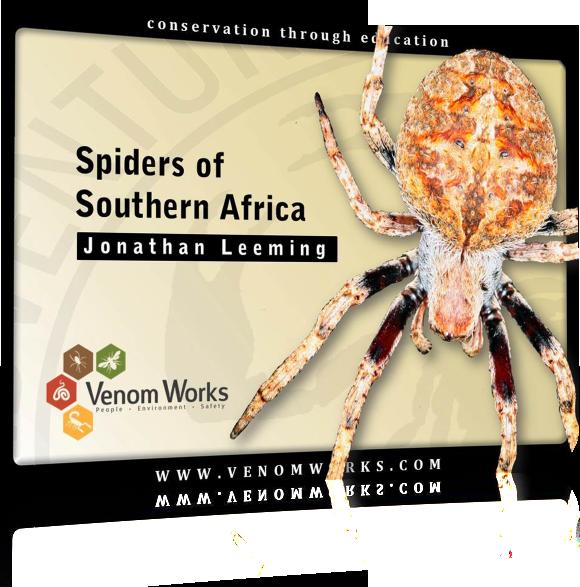 SpidersOfSA
